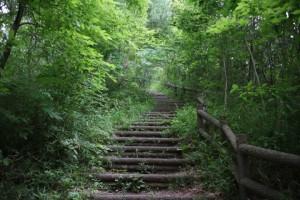 六道山まで続く階段